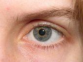 Woman's Grey Blue Eye
