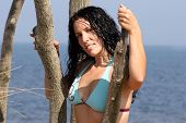 Sexy Bikini Lady At The Shore On A Tree