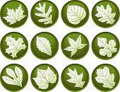 Twelve Leaf Buttons