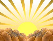 The Background Made Of White Bread And The  Sun.