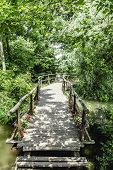Hand Made Small Romantic Wooden Bridge Over The River Water Surrounded By Trees And Flowers Leading  poster