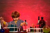 Back To School. First Grade. Elementary School. Little Kids Scientist Earning Chemistry In School La poster