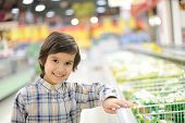 stock photo of grocery-shopping  - Kid in a grocery store - JPG