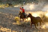 stock photo of buckaroo  - Two Cowboys galloping and roping through the desert - JPG