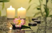 foto of yellow orchid  - spa still life with pink orchid flower and white burn candles on green background - JPG