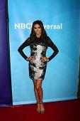 LOS ANGELES - JAN-7: Giuliana Rancic beachtet der NBCUniversal 2013 TCA Press Tour