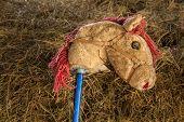 Stickhorse
