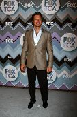 LOS ANGELES - JAN 8:  Antonio Sabato Jr. attends the FOX TV 2013 TCA Winter Press Tour at Langham Hu