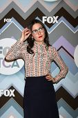 PASADENA, CA  - JAN 8:  Shannon Woodward attends the FOX TV 2013 TCA Winter Press Tour at Langham Hu