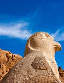 stock photo of hatshepsut  - The statue of Nekhbet in vulture form guardian the entrance to the upper tier of Queen Hatshepsut - JPG