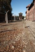 View To Watch Tower, Auschwitz