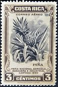 A Stamp Printed Dedicated To Agricultural Fair, Livestock And industrial Carthage shows a pineapple