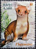 France - Circa 2001: A Stamp Printed In France Shows An Ermine, Circa 2001