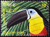 France - Circa 2003: A Stamp Printed In France Shows An Ariel Toucan, Circa 2003