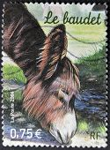 France - Circa 2004: A Stamp Printed In France Shows The Donkey, Circa 2004