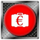 Euro Bag Metallic Icon