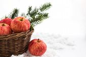 Christmas Composition With Red Apples In Basket And Branch Of Christmas Tree