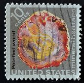 USA - CIRCA 1974: A stamp printed in the USA shows petrified wood mineral heritage circa 1974