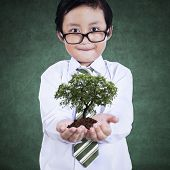 Smart Boy With Green Plant