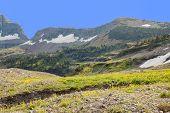 The View Across Logans Pass