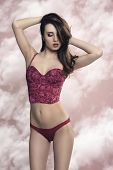 pic of red lingerie  - provocative brunette woman with slim body and long smooth hair posing and wearing sexy red lingerie - JPG