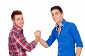 picture of mans-best-friend  - Couple of best friends shaking hands isolated on a white background - JPG