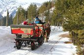 TYROL, AUSTRIA -  MARCH 17 : People enjoying a traditional horse carriage ride during the winter tim