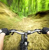 Mountain biking down hill descending fast on bicycle. View from bikers eyes.