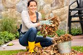 stock photo of bucket  - Smiling woman putting leaves in bucket fall garden housework - JPG