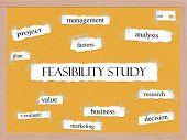 Feasibility Study Corkboard Word Concept