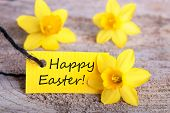 foto of easter decoration  - Label with Happy Easter with Narcisses yellow Easter Background - JPG