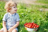 stock photo of strawberry blonde  - Happy little toddler boy on pick a berry organic strawberry farm - JPG