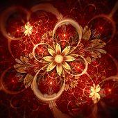 Dark Red Fractal Flower Focus