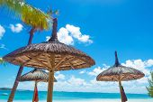 stock photo of mauritius  - straw umbrellas on the beautiful beach of the mauritius island - JPG