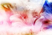 beautiful flowers made with color filters and textures