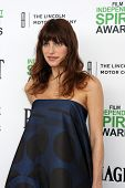 LOS ANGELES - MAR 1:  Lake Bell at the Film Independent Spirit Awards at Tent on the Beach on March 1, 2014 in Santa Monica, CA