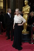 LOS ANGELES - MAR 2:  Meryl Streep at the 86th Academy Awards at Dolby Theater, Hollywood & Highland on March 2, 2014 in Los Angeles, CA