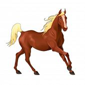 Elegant horse. Isolated vector animal.