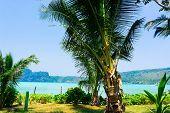 Relaxation In Peace Idyllic Island