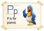 Illustration of a flashcard with letter P