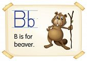Illustration of a flashcard with letter B