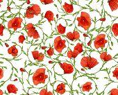 poppy flower ornamental seamless background