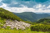 Nice summer day in Carpathian Mountains, Ukraine
