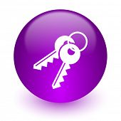 keys internet icon
