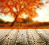 Autumn concept with empty wooden planks and blur tree on background
