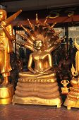 Buddha Brass Serpent Shelter
