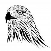 Hawk, Tattoo