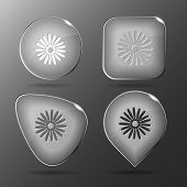 Camomile. Glass buttons. Vector illustration.