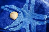 Shell On A Towel.