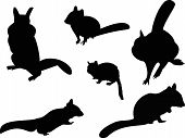 stock photo of chipmunks  - The Chipmunk Silhouettes includes six individual animal graphics - JPG